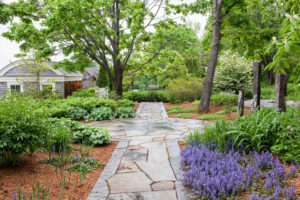Landscape Garden Photography Connecticut by Allegra Anderson